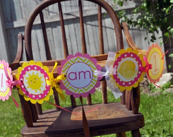 Lemonade and Sunshine Highchair Banner - 1st Birthday Banner - I am 1 Banner - Photo Prop - You Are My Sunshine - Pink Lemonade Party