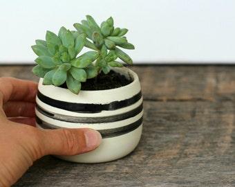 Mini Succulent Planter- Black & White Dot/Stripe