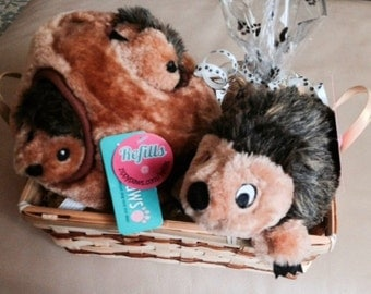 HEDGEHOGS Dog Gift Basket