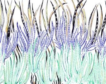 "Seaweed Print - Ocean Art - ""Seaweed Love"" Ink Drawing - Giclee Print - Sea Life Wall Decor - Mint and Blue Bathroom Art"
