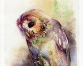 """PRINT - The Owl watercolor painting 7.5 x 11"""""""