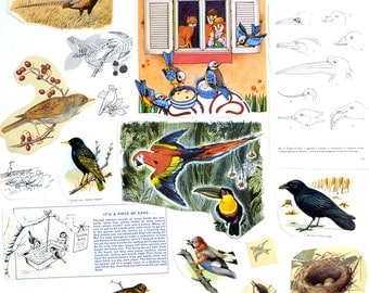 BIRDS supplies - Vintage paper pack -  themed paper ephemera pack - paper ephemera lot - craft supplies