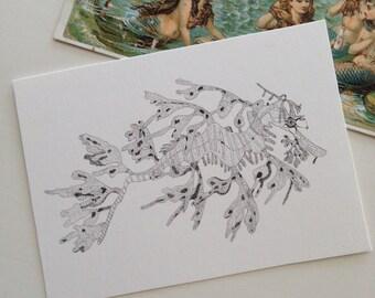 Seahorse, Leafy Sea Dragon, Art, ACEO, Print, Illustration, Pen and Ink, Ocean, Nautical, Beach, Sea, Australia