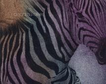 Zebra with Stripes Print Hand Pulled Intaglio Solarplate Baby
