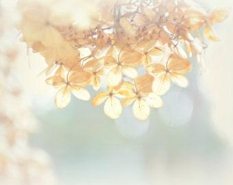 Floral Photography soft sage,hydrangeas,dreamy floral print,nature,feminine decor,simple,dried flowers,flower garden,dreamy,floral decor
