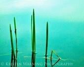 Nature Photos, Water Photos, Peace, Calm, Nature, Photography, Lake, Art