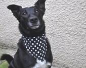 Dog Bandana - Over Collar -Spotty Dog - Free Worldwide Shipping - Profits to Dog Rescue