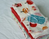 Cloth Baby Wipes Starter Kit - 3 dozen. SALE 20% OFF. Eco friendly reusable wipes.