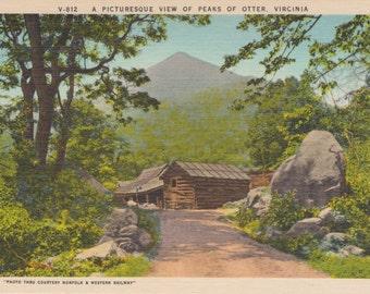 Otter, Virginia - Linen Postcard - Unused (F1)