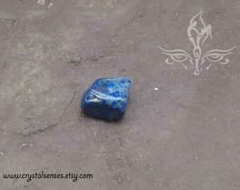 Lapis Lazuli Tumbled Gemstone Crystal - 1 piece Small Size (LL0027) Organization, Intuition, Psychic Abilities, Third Eye Chakra