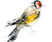 Goldfinch I Original Watercolour Illustration