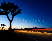 Welcome To Joshua Tree -- Photo Print