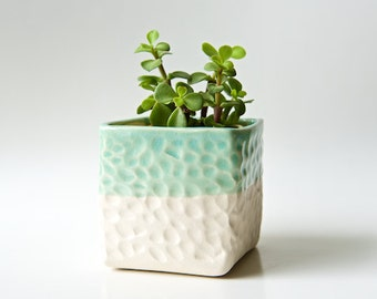 Succulent Planter Box Large Planter Succulent Pot Indoor Planter Modern Air Plant Holder Gardening Gift Gifts for Mom Housewarming Ceramic