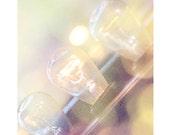 Carnival Lights 8x10 DIGITAL Print