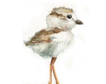 Watercolor Baby Seagull, Baby Seagull Print