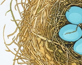"Robin's Nest Fine Art Linocut Print, Original Art, 7-Color 13"" x 11"", Hand-carved & pulled relief print, subdued Woodland Color, Bird nest"