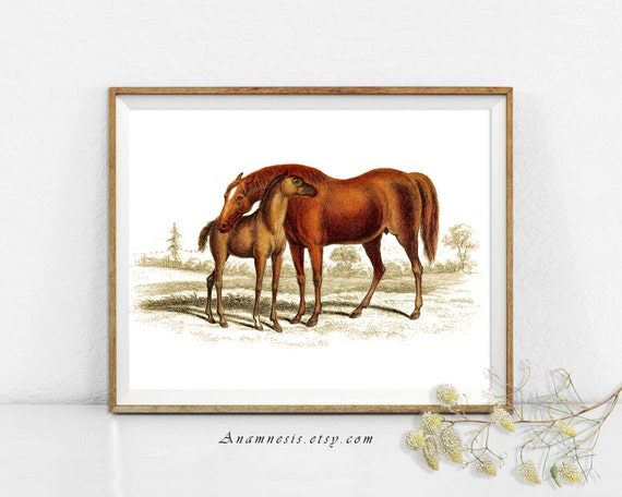 Horse Print - MARE AND COLT - digital download - printable antique horse illustration for prints, totes, fabric, cards - equestrian art