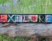 WORDS Inspired By Nature: EXPLORE in red, blue, gray, and green (photography, handmade gift, inspirational art, wall decor)
