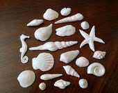 Gum Paste Sea Shells Kit  No. 2 - 21 PC / Cake Topper and Cupcake  Decorations