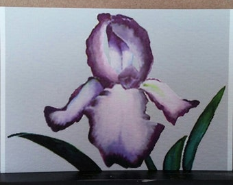 Iris #1 ACEO, Purple and White Bearded Iris, Artist Card, Signed Art Trading Card