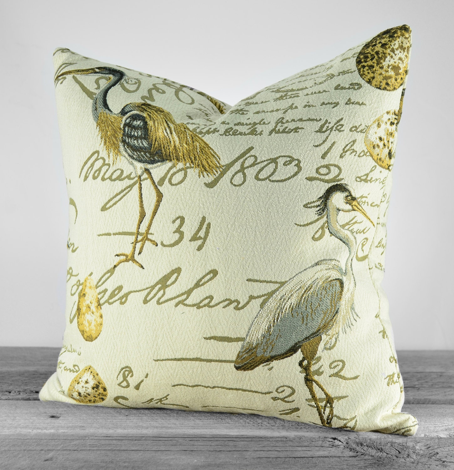Decorative Bird Pillow Cover Coastal Birds with Script