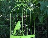 Tall Wall Bird Cage / Lime  Metal Hanging Wall Decor