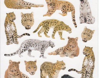 Leopard Panther Stickers (11244)