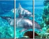 Framed Huge 3-Panel Ocean Sea World Dolphin Canvas Art Print - Ready to Hang
