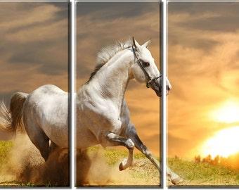Framed Huge 3-Panel Horse White Stallion in Sunset Canvas Art Print - Ready to Hang