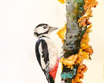 Great spotted woodpecker- A1 original- signed- unframed watercolour