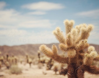 California Desert Photography, Cactus Photography, Joshua Tree print, Coachella art, Boho Style Decor, Pastel Photography, Poster Size print