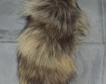 """1 Real Coyote Tail #1  """"NEW"""" -- Mountain Man, Crafts, Fashions, Sewing, Costumes"""