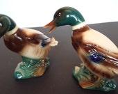 Royal Copley Ducks