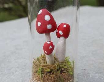 Miniature Mushroom Terrarium Fairy Garden Mini Mushrooms Fairy Garden Accessory - Medium Glass Cloche Bell Jar