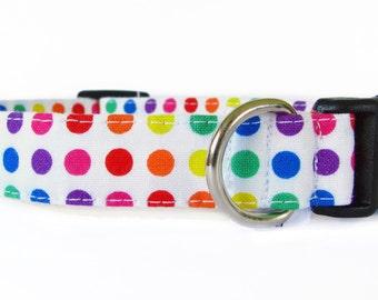 Rainbow Polka Dots - pet collar, dog collar, cat collar