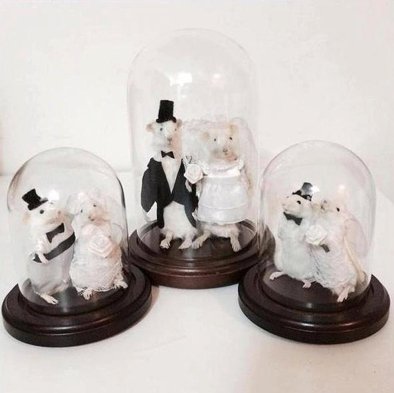 taxidermy mouse wedding cake topper taxidermy wedding mouse and groom mice 20767