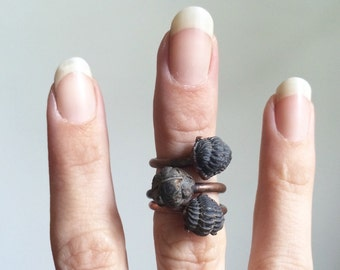 Trilobite fossil ring | Electroformed fossil jewelry | Raw mineral ring | Black trilobite fossil ring | Rare fossil jewerly | Mens ring