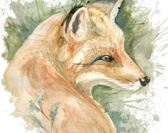Watercolor Fox Portrait Print
