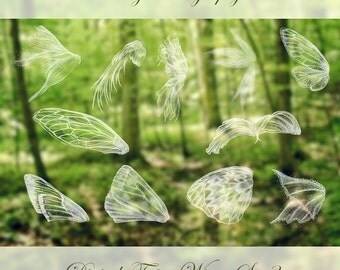 11 Fairy Wings Photoshop Overlays SET 3, angel, bird, wings at rest