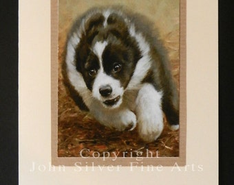Border Collie Dog Portrait Hand Made Greetings Card. From Original Paintings by JOHN SILVER. GCBC011