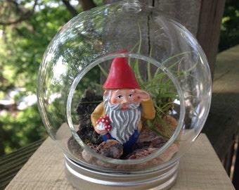 Gnome Airplant Terrarium, DIY Terrarium Kit, Airplant Terrarium, Hanging Terrarium, white elephant gift, Airplant, Children's Gift, Woodland