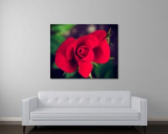 Rose canvas art, large wall art canvas, ready to hang art, living room art, red wall art, canvas gallery wrap, home wall decor With Ease