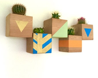 CUSTOM COLOR: Floating Cactus Cube Wood Planter / Wall Planter / Vertical Planter / Living Wall /Hanging Planter