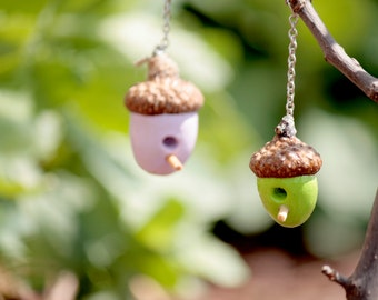 Fairy Garden Acorn Bird House!