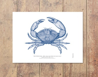 Stone Crab Art in Blue- Crab Print Beach Decor Nautical Decor Ocean Art Wall Art Nautical Print Gifts For Dad Beach Print Father's Day Gift