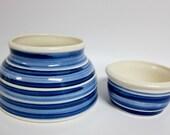 king charles spaniel dog bowl blue water and food dish
