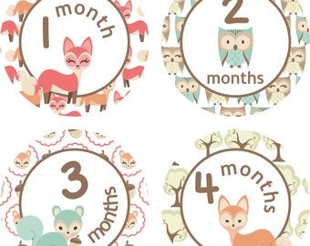 Monthly Baby Milestone Stickers Baby Girl Baby Shower Gift One-Piece Baby Stickers Monthly Baby Stickers Baby Month Sticker Woodland Forest