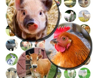 Farm Animals Cows Pigs Chickens Horses Sheep Goats Lamb Digital Images Collage Sheet 1 inch Circles 8.5x11 & 4x6 INSTANT Download BC99