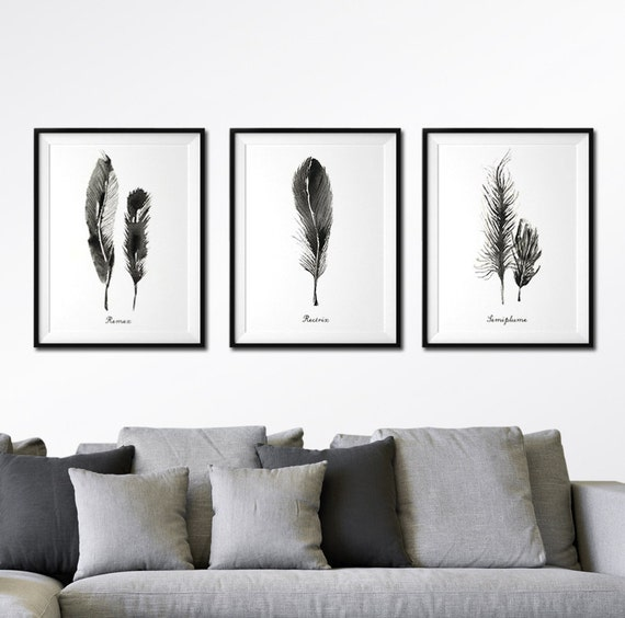 Feather watercolor art set of 3 feather print black and for Set of three canvas paintings