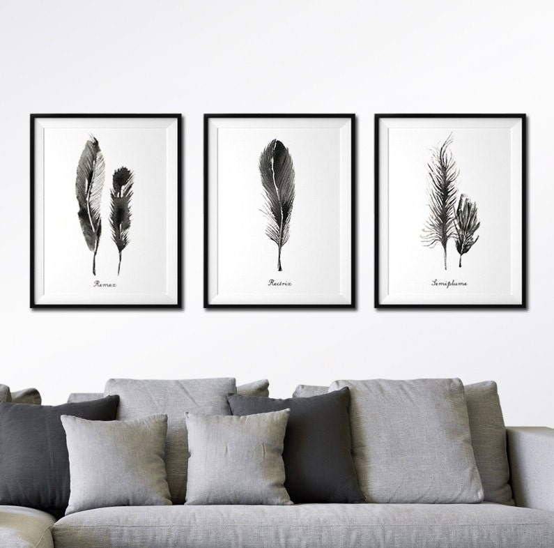 Black And White Artwork For Bedroom Grey Paint Colors Bedroom Art For Kids Bedroom Proper Bedroom Arrangement: Feather Watercolor Art Set Of 3 Feather Print Black And